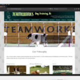 Teamworks website after updates